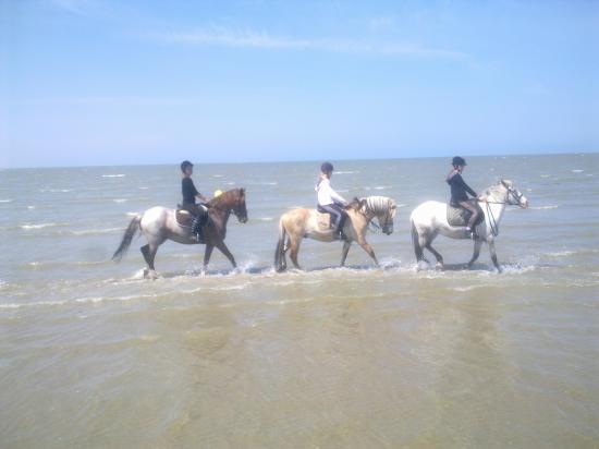 Trois baigneurs... cavaliers seuls.