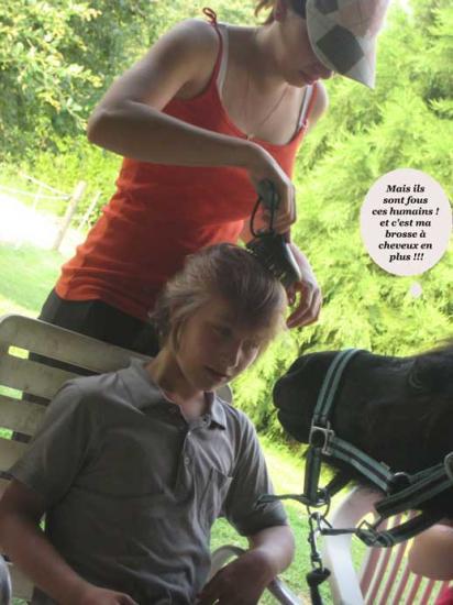 Drôles de coiffeurs!