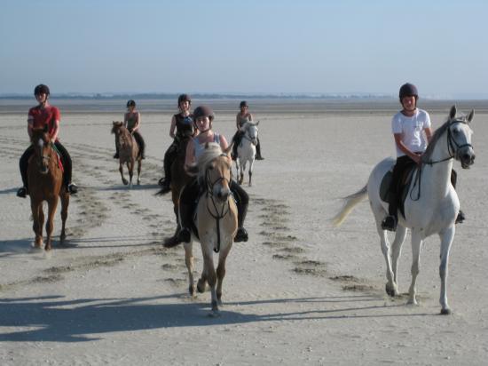 Des cavaliers toujours seuls ou presque!